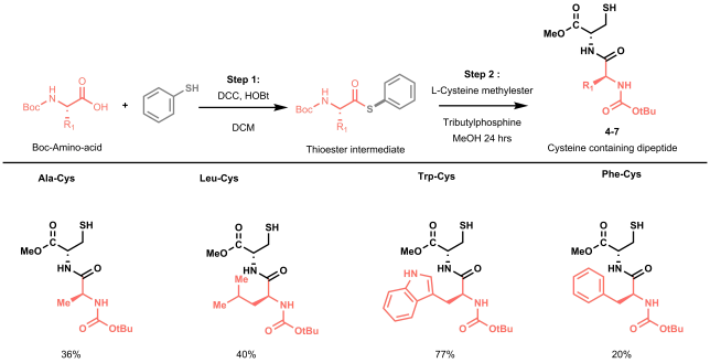 Figure 4: A schematic representation of the two-step synthesis required for the preparation of a small library of dipeptides via native chemical ligation. Yields reported refer to the overall two-step yields.